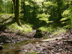 Waldbaden – Bad Endbach